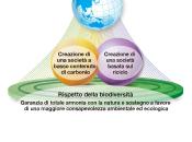 Environmental Vision