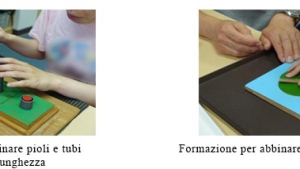 Formazione per abbinare pioli e tubi della stessa lunghezza / Formazione per abbinare forme e telai corrispondenti
