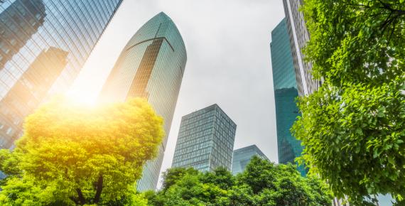 Proteggere l'aria, la terra e l'acqua con il cuore e con le tecnologie: Mitsubishi Electric presenta 'Environmental sustainability vision 2050'